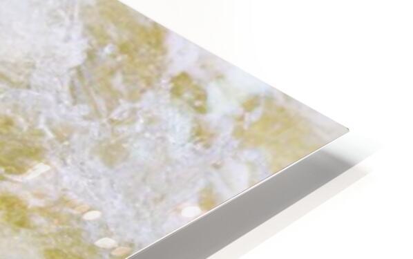 Great Blue Heron ap 2014 Impression de sublimation métal HD