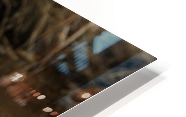Great White Egret ap 2802 Impression de sublimation métal HD