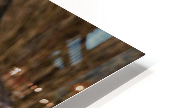 Great White Egret ap 2767 HD Sublimation Metal print