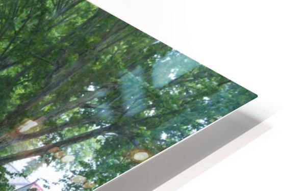 Summer Rain ap 2892 HD Sublimation Metal print
