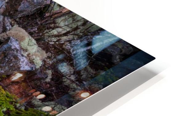 Purple Rocks ap 2289 HD Sublimation Metal print