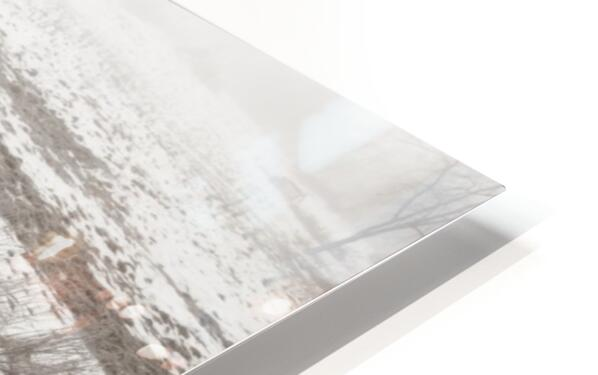Step Side ap 1734 B&W HD Sublimation Metal print