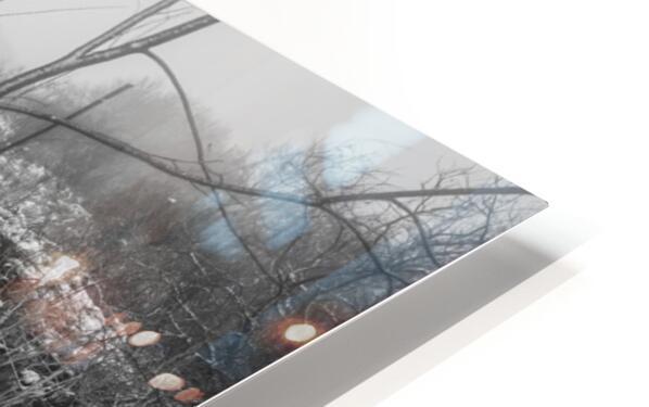 Snow Storm ap 2706 HD Sublimation Metal print