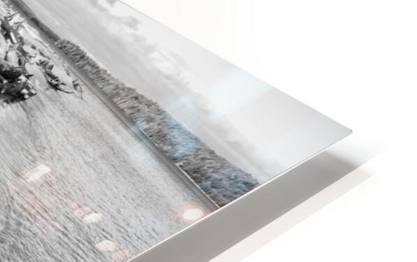 Driftwood ap 2482 B&W HD Sublimation Metal print