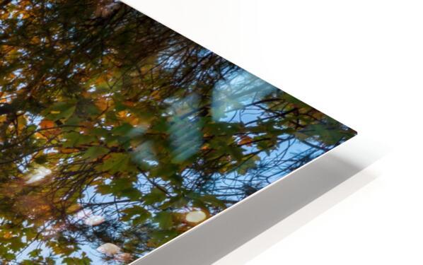 Sunset ap 2574 HD Sublimation Metal print