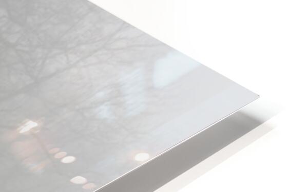 Treeline apmi 1546 HD Sublimation Metal print