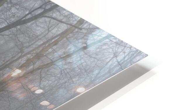 Treeline apmi 1547 HD Sublimation Metal print