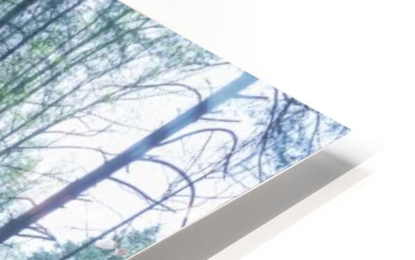 Ash Cave apmi 1646 HD Sublimation Metal print