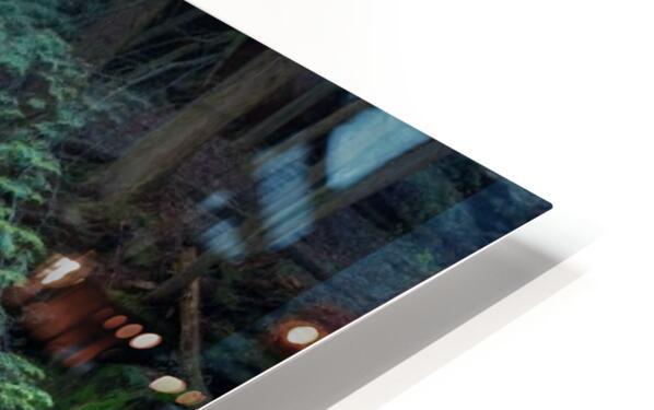 Cedar Falls apmi 1627 HD Sublimation Metal print