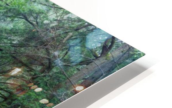 Near Cedar Falls apmi 1632 HD Sublimation Metal print