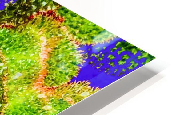 Tropical Colours HD Sublimation Metal print