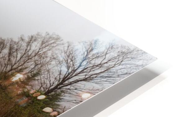 Profile Lake ap 2192 HD Sublimation Metal print