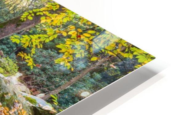 Reflections ap 2476 HD Sublimation Metal print