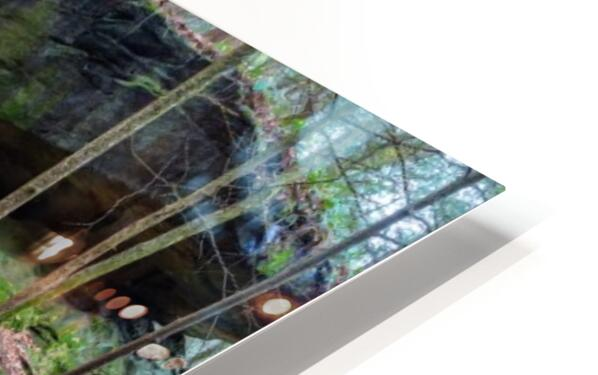 Kildoo Run apmi 1751 HD Sublimation Metal print