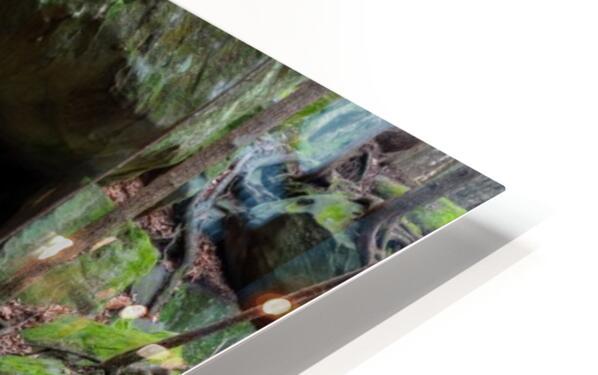 Kildoo Run apmi 1750 HD Sublimation Metal print