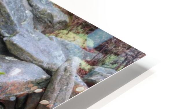 Nature apmi 1606 HD Sublimation Metal print