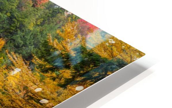 Blackwater Falls apmi 1904 HD Sublimation Metal print