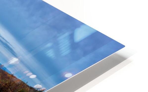 Blueberries apmi 1779 HD Sublimation Metal print