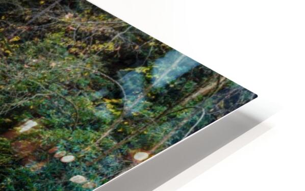 Cowanshannock Creek apmi 1962 HD Sublimation Metal print