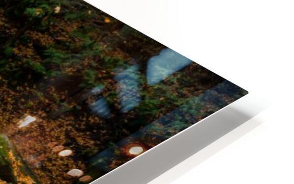 Slippery Rock Creek apmi 1959 HD Sublimation Metal print