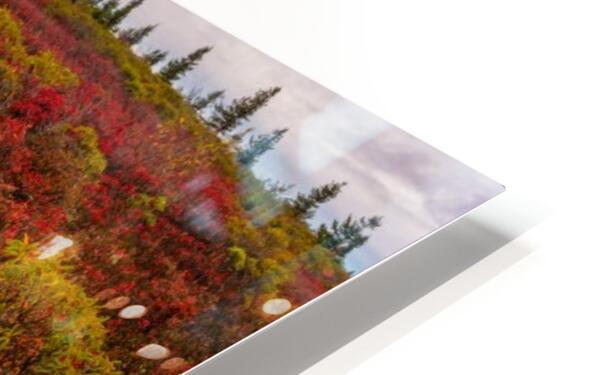 The Colors of Nature apmi 1786AL HD Sublimation Metal print