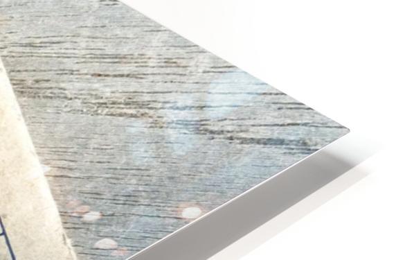 Fluor HD Sublimation Metal print