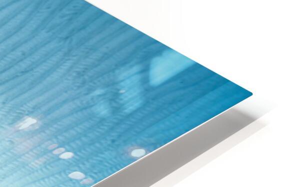 diver 3 HD Sublimation Metal print