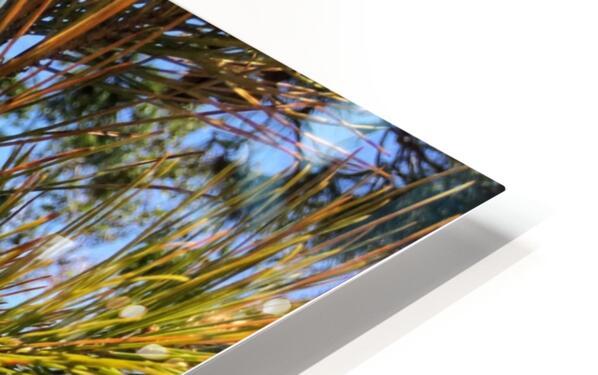 Greece Peloponnese HD Sublimation Metal print