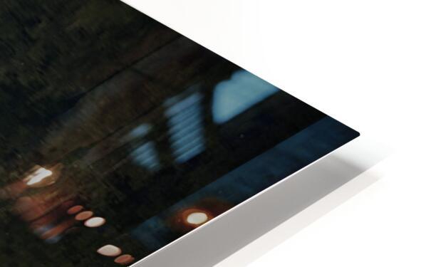 Reflection on a Bonsai Tree HD Sublimation Metal print