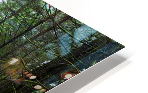This is the Way HD Sublimation Metal print