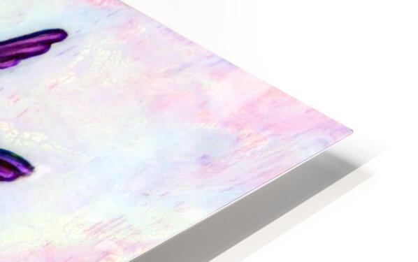 Tiny Diva HD Sublimation Metal print