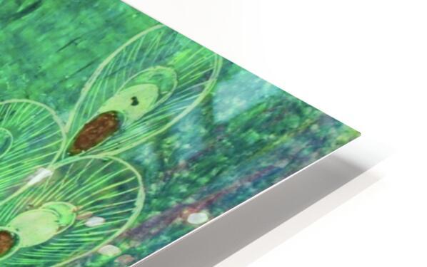 Peacock HD Sublimation Metal print