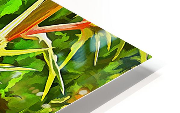 Eryngium Pop Art Style HD Sublimation Metal print