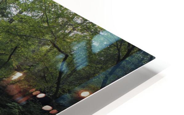 Harrison Wright Falls HD Sublimation Metal print