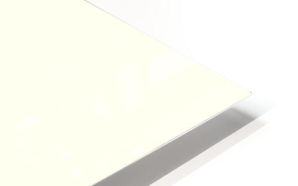 Incensed HD Sublimation Metal print