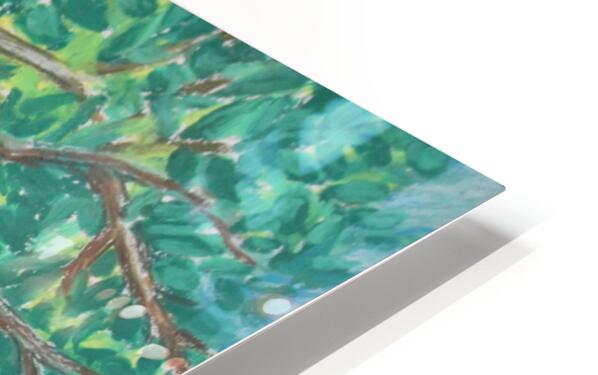 treewalk HD Sublimation Metal print