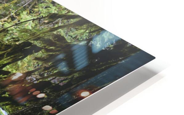The Mckenzie River HD Sublimation Metal print