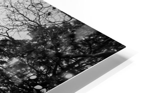 Temple of Love Impression de sublimation métal HD