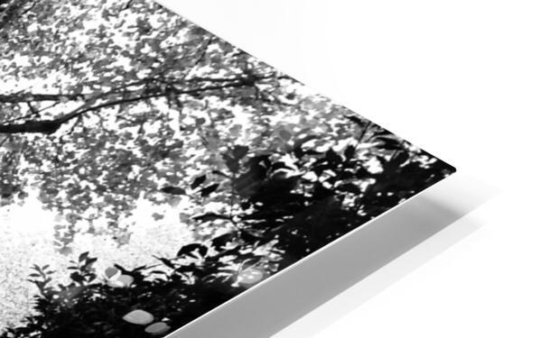 Dead leaves Impression de sublimation métal HD