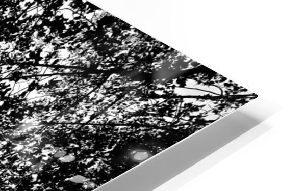 Metal Leaves  Impression de sublimation métal HD