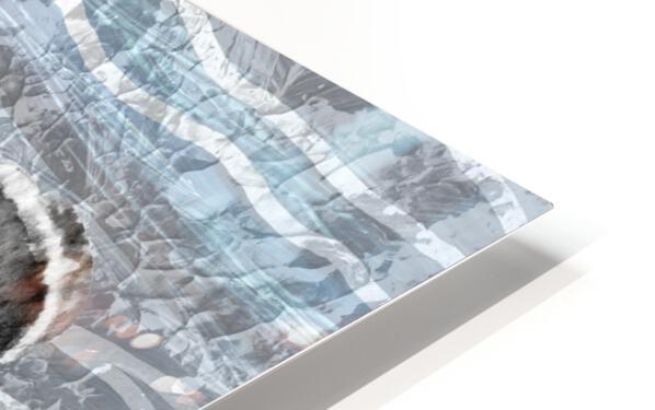 Silver Gray Seashell On Ocean Shore Waves And Rocks I HD Sublimation Metal print