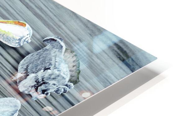 Silver Gray Seashells Heart On Ocean Shore Wooden Deck Beach House Art  HD Sublimation Metal print