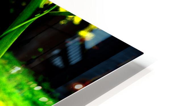 sofn EE42975E HD Sublimation Metal print