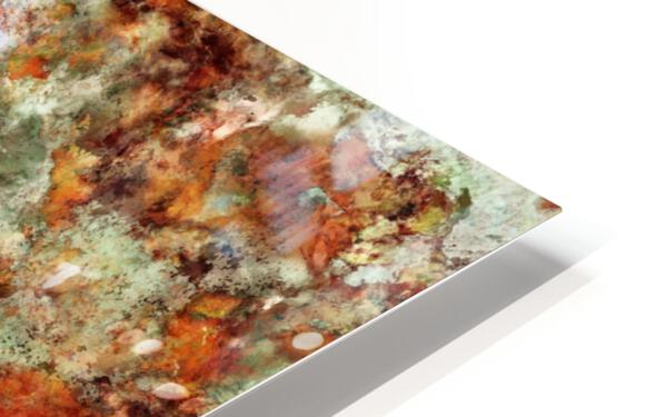 Submerged leaves HD Sublimation Metal print