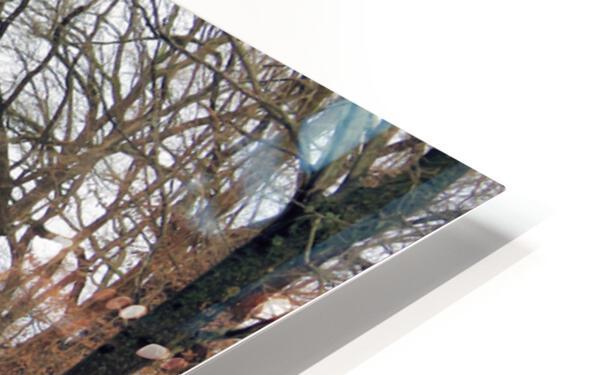 Lake Panorama HD Sublimation Metal print