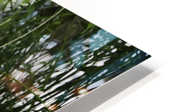 TELL ME MORE...Collection 6-6 HD Sublimation Metal print