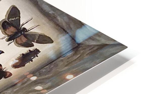 Beetles HD Sublimation Metal print