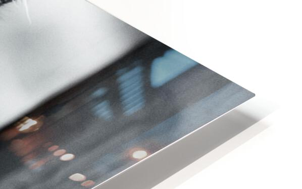Fierce  HD Sublimation Metal print