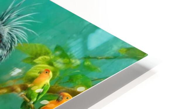 Birds Of Paradise  HD Sublimation Metal print