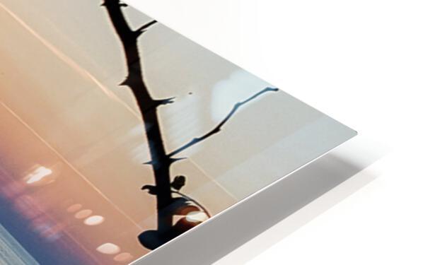 Lake Erie Doc HD Sublimation Metal print